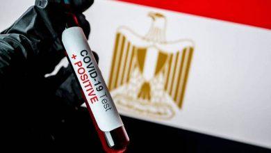صورة مصر..  بدء تجربة لقاحين لفيروس كورونا على متطوعين