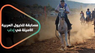 صورة لأول مرة في الشمال السوري .. مسابقة للخيول العربية الأصيلة في إدلب