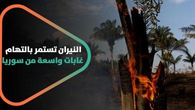 صورة النيران تستمر بالتهام غابات واسعة من سوريا.. ما هي أسباب هذه الحرائق؟