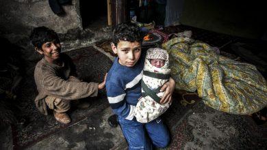 صورة تحذيرات أممية من انعدام الأمن الغذائي لملايين السوريين