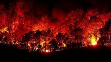 صورة هذه حصيلة النظام السوري التي أحصاها لحرائق سوريا