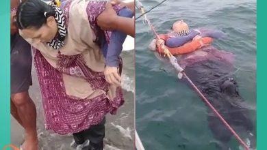 صورة في واقعة أشبه بالمعجزة وبعد عامين من اختفائها.. قصة امرأة عثر عليها حيّة وسط مياه البحر