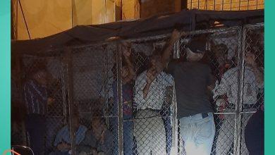 صورة للحصول على الخبز في سوريا.. عليك أن تكون داخل الأقفاص الحديدية على طريقة سجون النظام السوري