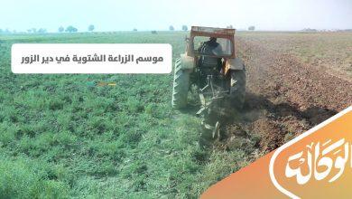 صورة موسم الزراعة الشتوية في دير الزور .. كيف يواجه المزارعون الغلاء ومصاعب الزراعة؟